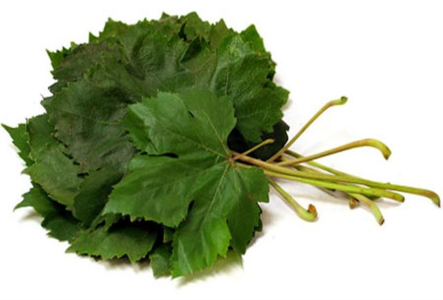 گیاهی که یک تنه سرما خوردگی و آنفلوانزا را حریف است|خبر فوری