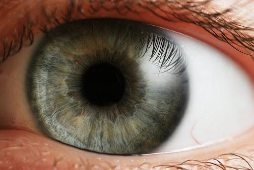 نابینا, دانشمندان نابینایی را بینا کردند, رسا نشر - خبر روز