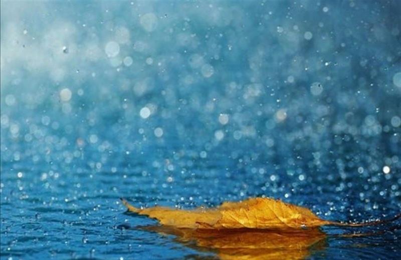 بارش شدید باران در ۱۵ استان کشور خبر فوری