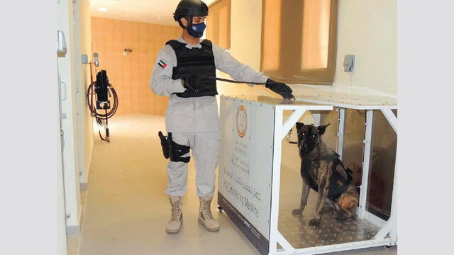 بکارگیریِ سگهای کرونایاب در فرودگاه ابوظبی خبر فوری