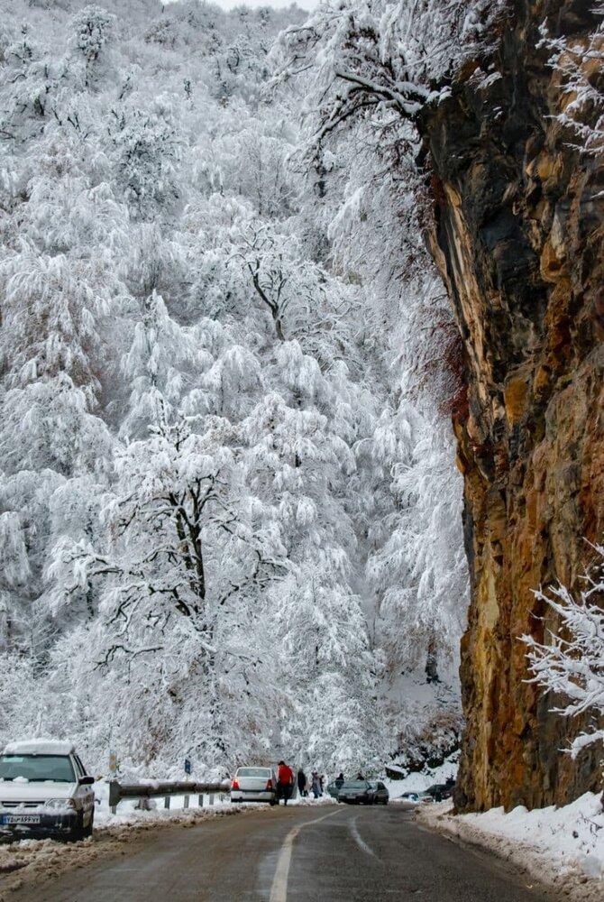 خبرآنلاین - ببینید | تصویری رویایی از بارش برف در جاده دالخانی در ارتفاعات رامسر