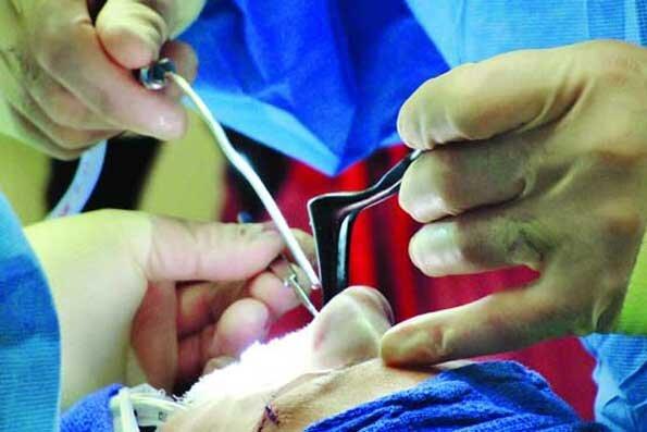 جراحی زیبایی, مرد آرایشگری که جراحی زیبایی میکرد بازداشت شد, رسا نشر - خبر روز