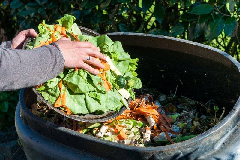 مواد غذایی, هدر شدن ۱۷ درصد مواد غذایی, رسا نشر - خبر روز