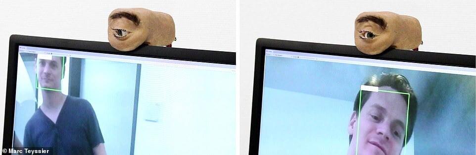, وب کمی شبیه چشم انسان که به شما خیره می شود/ عکس, رسا نشر - خبر روز
