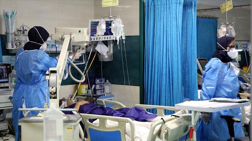 کرونای آفریقایی, ۵ مورد ابتلای قطعی به ویروس کرونای آفریقایی در هرمزگان شناسایی شد, رسا نشر - خبر روز